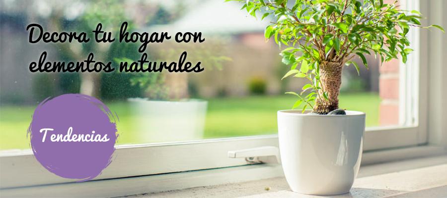 DECORA TU CASA CON ELEMENTOS NATURALES